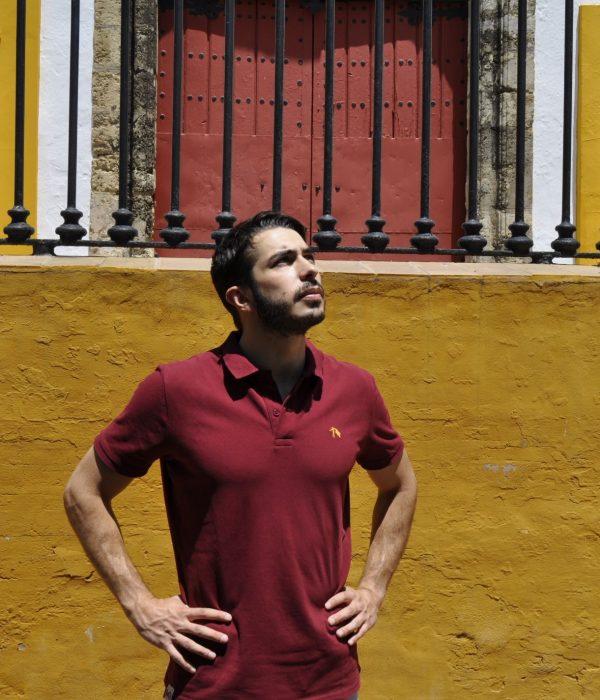 Joselito El Gallo (Polo)